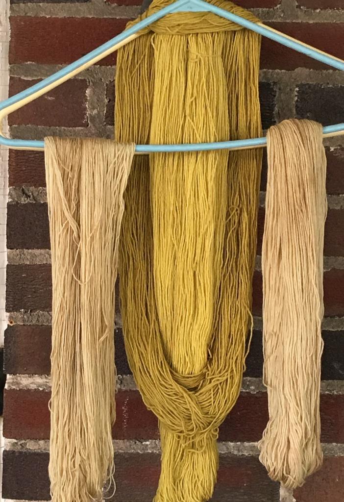 dandelion-root-beige