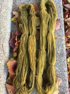 fig-leaf-dye-iron-mordant-marigold-afterdye