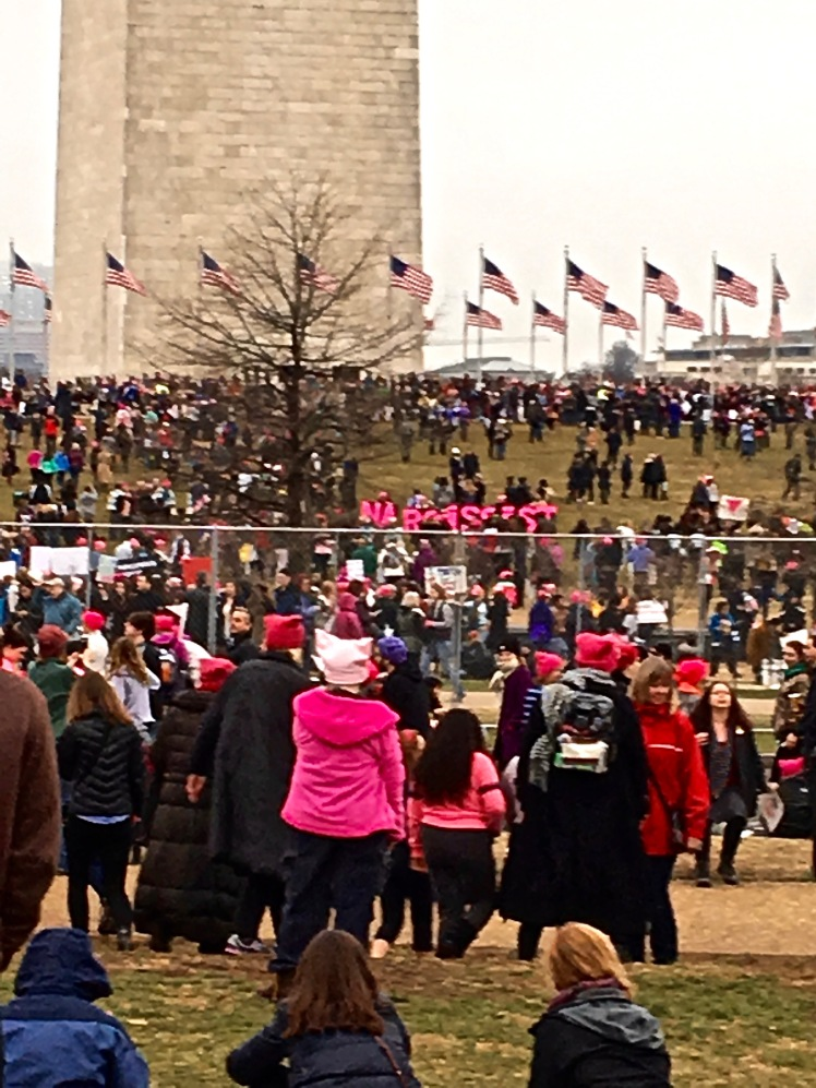 Crowd shot at Washington Monument