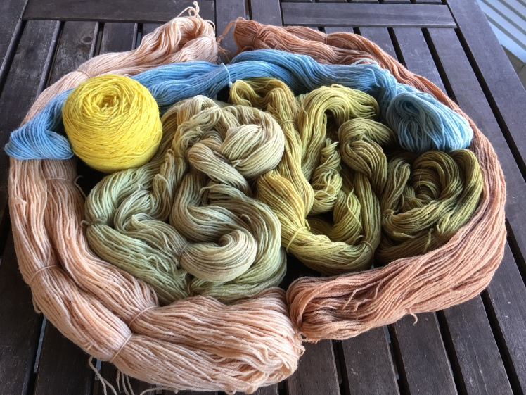 Pink yarn dyed with avocado skin and pits; yellow from marigold; green from red maple leaves; blue from black beans