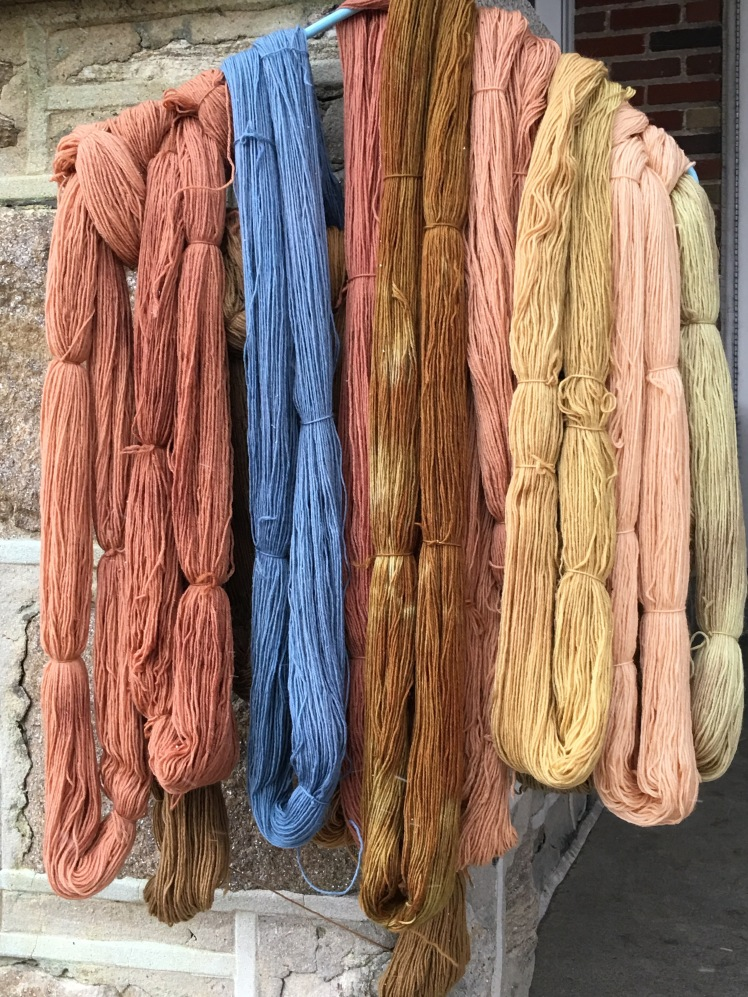 Black bean dyed yarn contrasting with other plant-dyed yarn