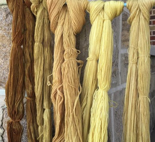 Five colors, same dye bath