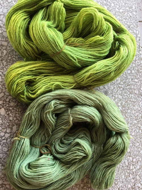 Comparison of different dyeings of yarn dyed in black bean bath and overdyed in marigold, first dyeing top, second dyeing bottom