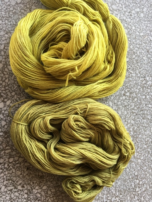 Color comparison of two different dried marigold dye baths