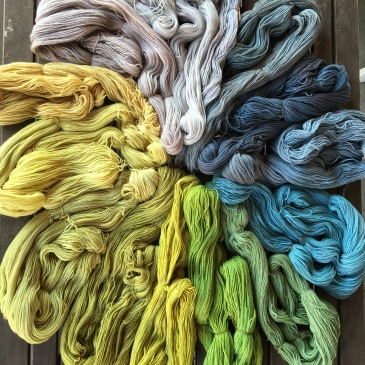 Plant-dyed yarn arrayed in circular gradient