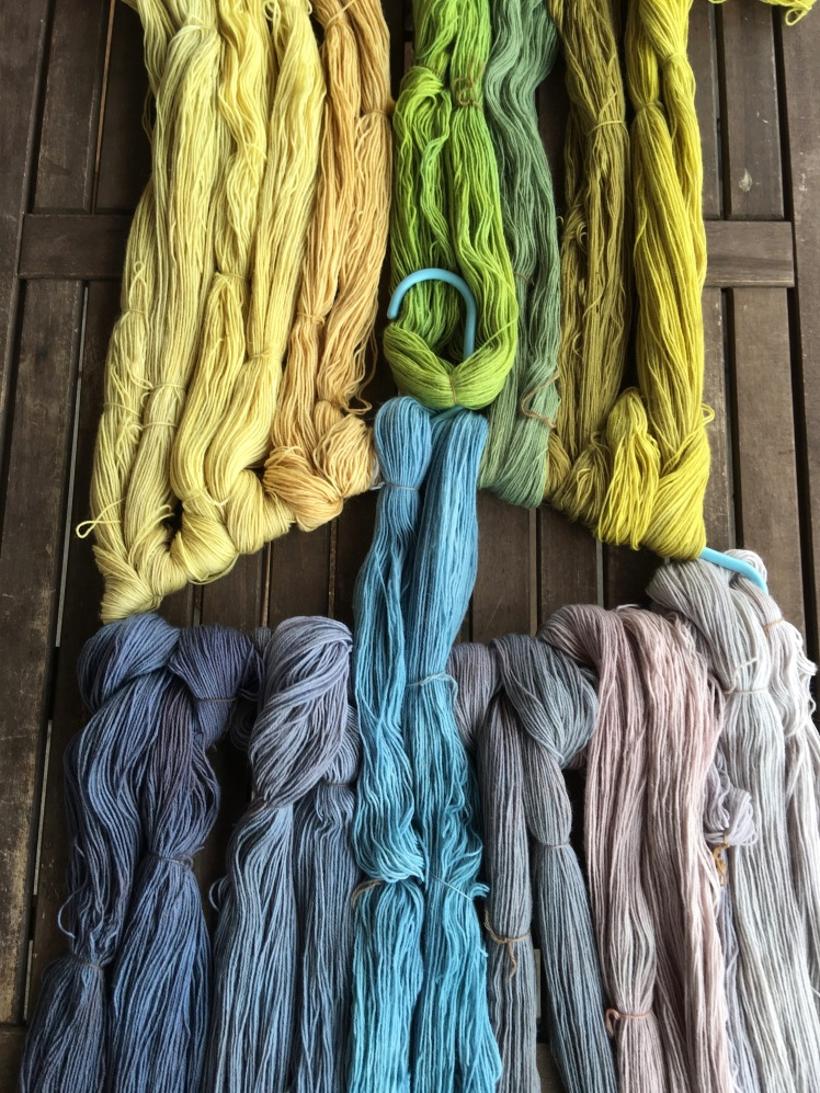 Yarn dyed in onion skin, lichen, black rice, black beans, marigold