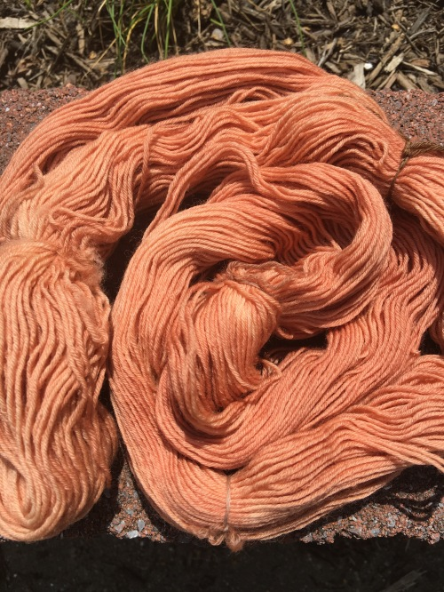 Second dyeing of avocado stone bath