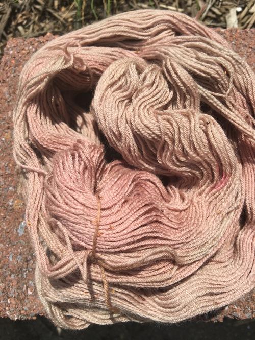 Yarn dyed in calendula with hibiscus overdye