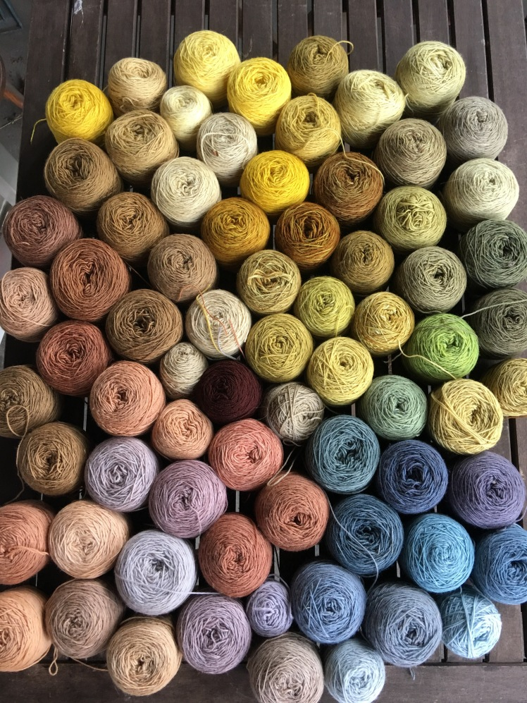 73 cakes of plant-dyed yarn in many colors