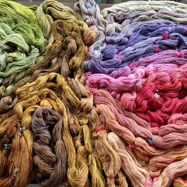 yarn dyed with tansy, amaranth, cherry, etc.
