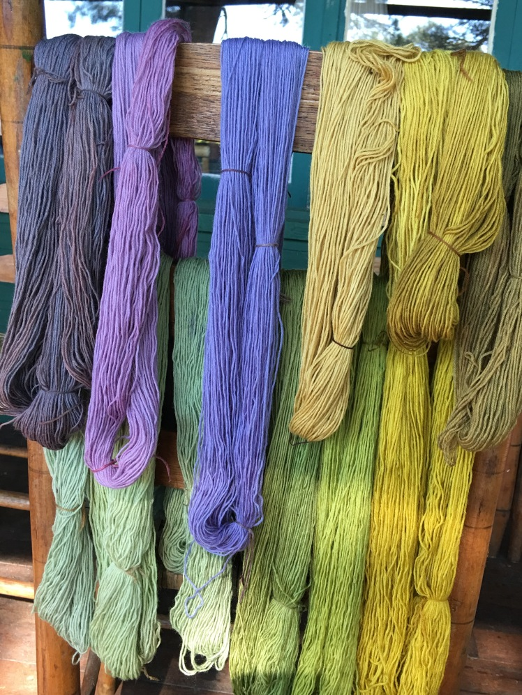 Natural dyeing with plants and mushrooms in Michigan