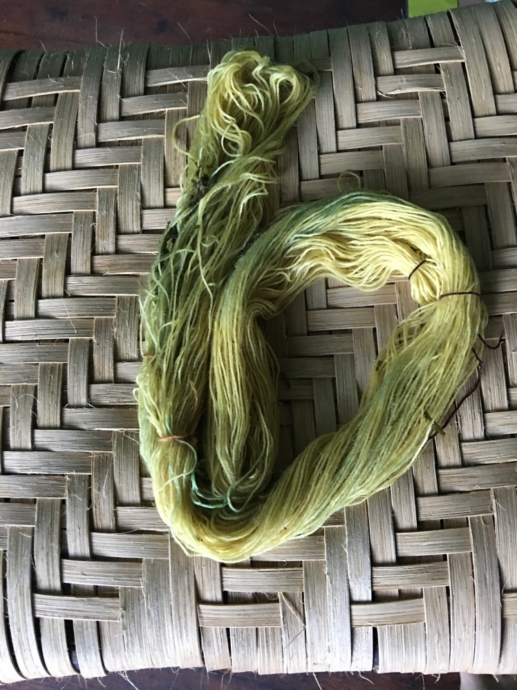 Oxidation changes color of yarn dyed in tansy from yellow to green