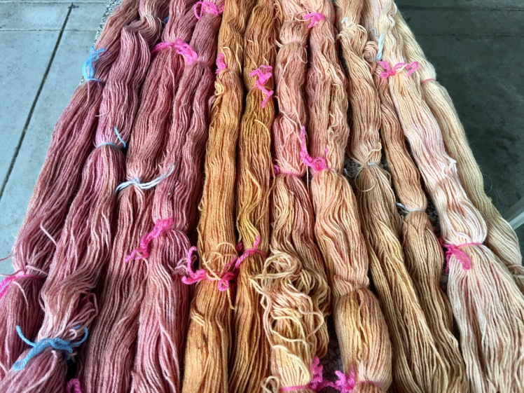 Yarn dyed in various yellow dyes and overdyed in amaranth