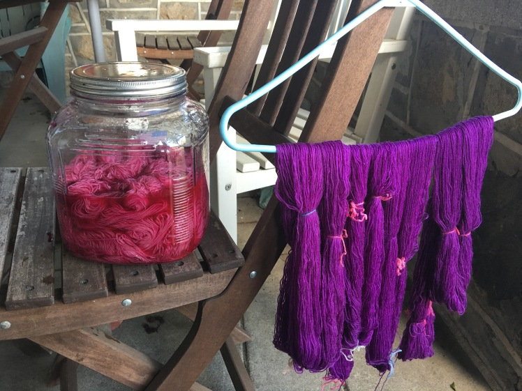 Amaranth and pokeberry fermentation dyeing