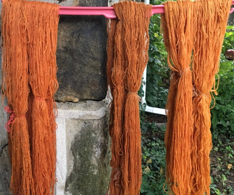 Annatto seed dyed yarn before rinsing and drying