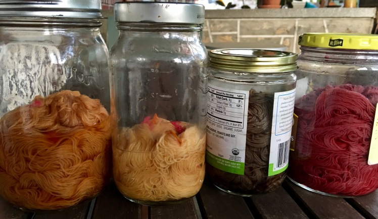 Yarn in jars of acidic and alkaline baths of fermented yellow cosmos and hibiscus dyes