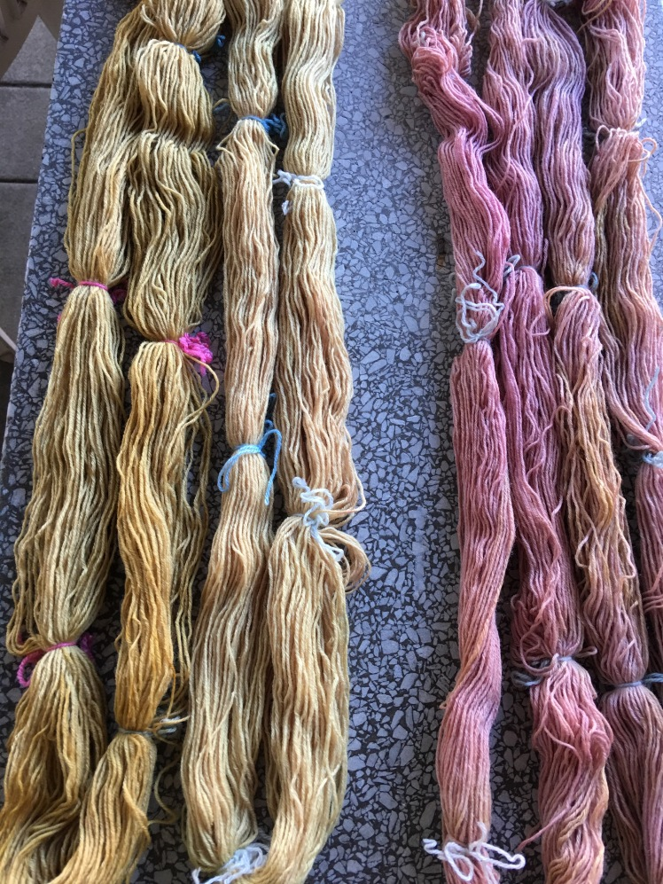 Dyes extracted from marigold, dahlia, amaranth and pokeberry