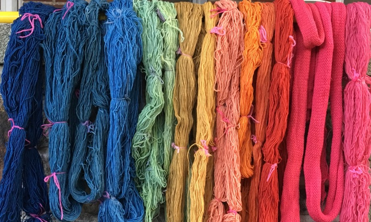 Yarn dyed with indigo, madder, eucalyptus, and hawthorn