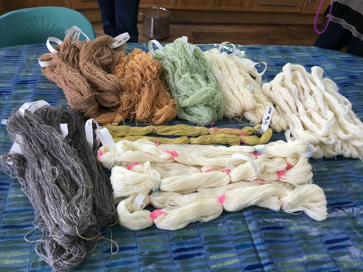 yarn prepared for dyeing with various mordants